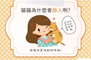【貓咪行為學】貓貓為什麼會舔人咧?是嫌主人太髒嗎?