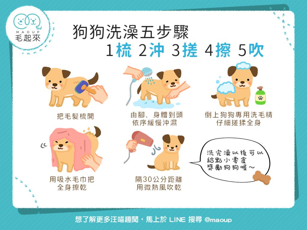 幫狗洗澡的5步驟