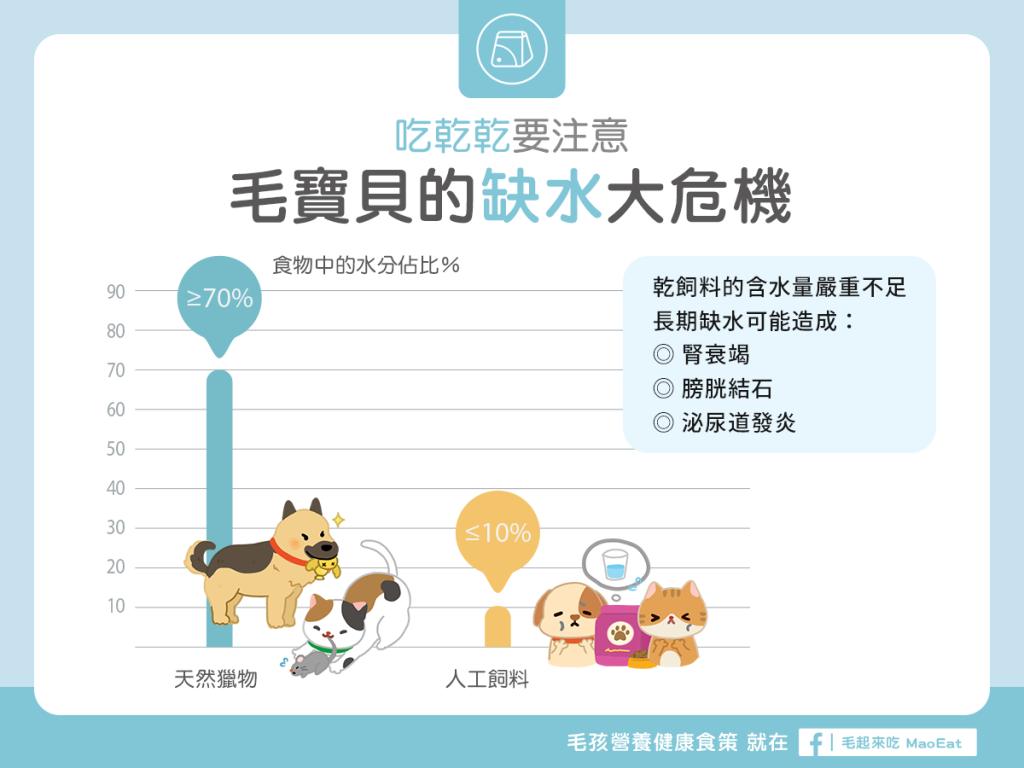 【毛孩食品解析】飼料沒有告訴你,乾飼料、天然獵物水分比一比!