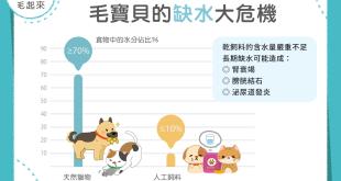 【毛孩食品解析】飼料沒有告訴你,乾飼料、天然獵物水份比一比!