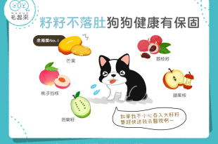 【毛孩食材圖鑑】水果籽不落肚,狗狗健康有保固!