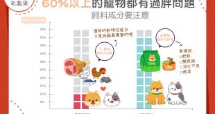 【毛孩食品解析】六成毛孩過胖!嫌犯竟然是飼料?!