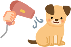 5. 幫狗狗用微熱風吹乾