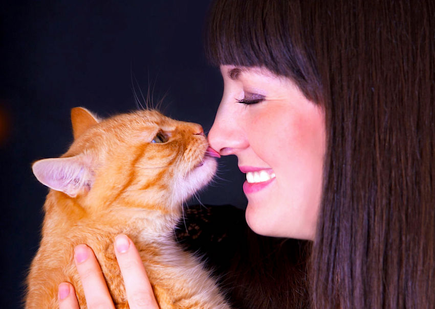 cat-licking-womans-face