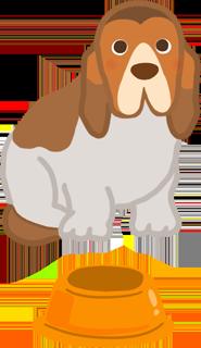 長耳朵的狗米格魯查理士巴吉度窄口的寵物食碗