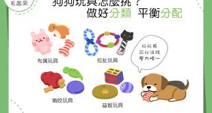 【汪汪的玩具箱】狗狗玩具怎麼挑?種類均衡最舒壓!