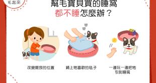【汪汪家居】舒適的睡床不得青睞?3方法讓狗狗愛上寵物睡床!