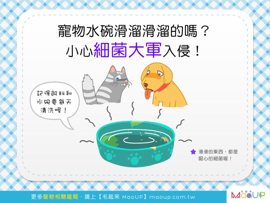 【水碗衛生別輕忽】汪喵水碗滑溜溜?!當心細菌大軍入侵啦!