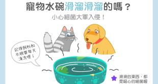 狗狗貓咪水碗滑溜溜,小心細菌滋生