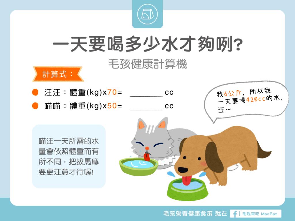 寵物貓狗一日飲水量計算一天喝多少水