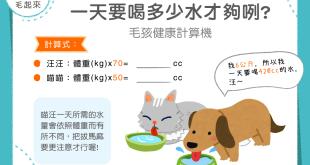 【汪喵餵養知識】喝水量計算機!狗狗貓咪一天要喝多少水才夠呢?