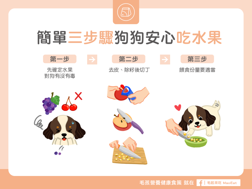狗寵物吃水果吃法處理方式去皮去籽切丁無毒餵食份量