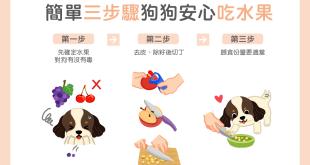 【鮮食烹飪秘訣】簡單 3 步驟~狗狗安心吃果果
