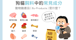 【毛孩食品解析】狗貓飼料中常見的「動物副產品」居然是…?