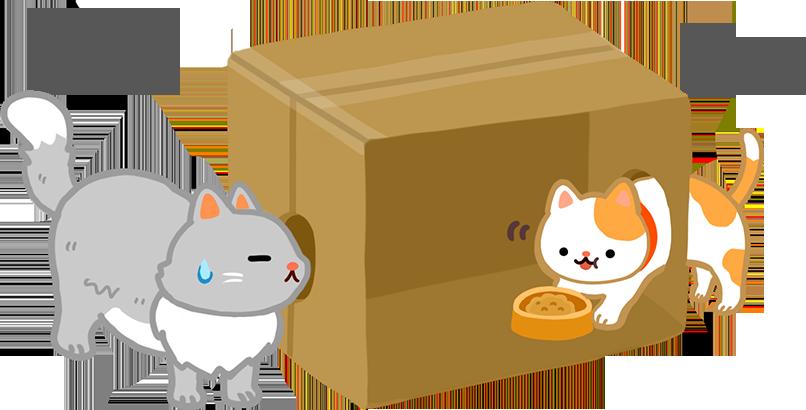 胖貓搶瘦貓的食物貓咪爭食行為兩隻貓吃飯