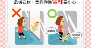 【縮短牽繩有保障】帶狗狗進電梯別大意!當心「人狗兩隔」!