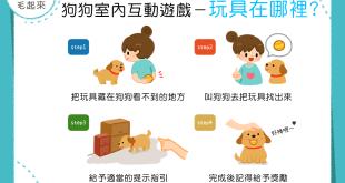 【在家玩耍樂趣多】玩具在哪裡?狗狗找給你!