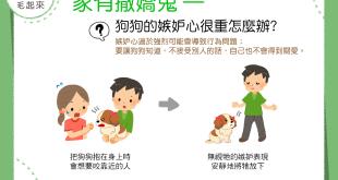【家有撒嬌鬼】生人勿近?!狗狗的嫉妒心很重怎麼辦?