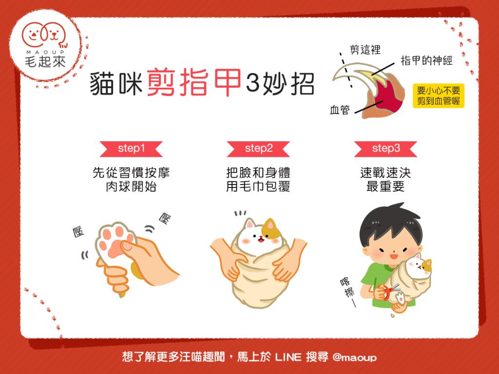 【貓奴智慧王】幫貓剪指甲好煎熬?3妙招幫貓貓輕鬆剪指甲!