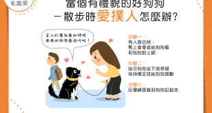 【家有乖狗狗】狗狗散步愛撲人!?3步驟教你訓練好狗狗!