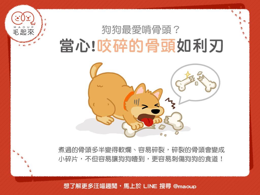 【汪喵餵養知識】狗狗最愛啃骨頭?當心!咬碎的骨頭如利刃!