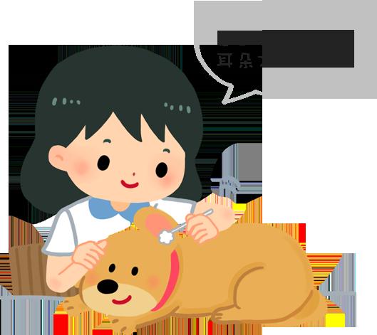 狗狗耳朵每週至少清一次才健康喔!