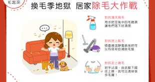 【汪喵家居】換毛季地獄又來啦?!居家除毛大作戰!