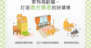 【家有高齡貓】家裡的環境適合喵喵「養老」嗎?快來看看吧!