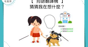 【狗語翻譯機】眼睛輕閉、耳朵放鬆~你知道狗狗在想什麼嗎?
