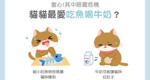 【毛孩食材圖鑑】貓咪最愛吃魚、喝牛奶?當心!其中暗藏危機!