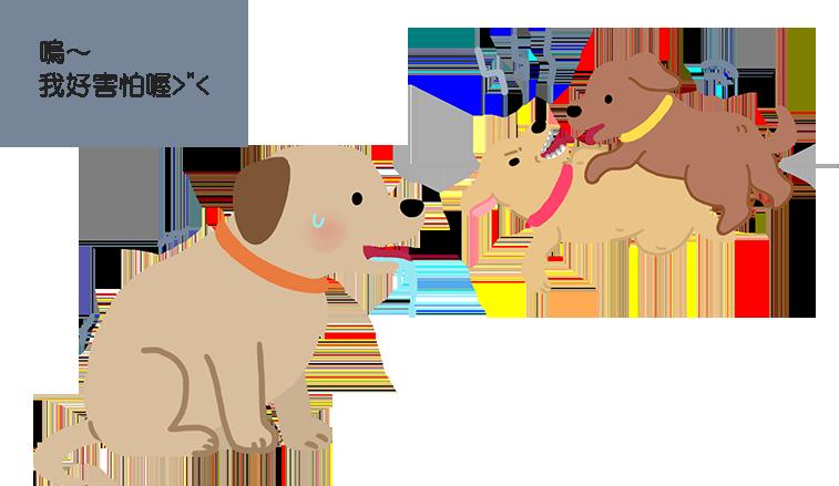 【狗語翻譯機 】狗狗流口水、尾巴下垂?猜猜狗狗想什麼!