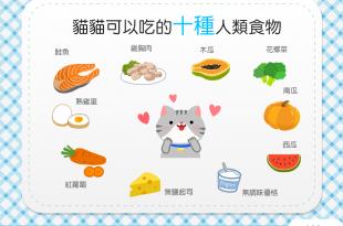 【分食不再心驚驚!】10種貓貓可以吃的人類食物