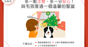 【汪喵過聖誕】聖誕節要到啦!對家裡的裝飾多注意,才安心喔!