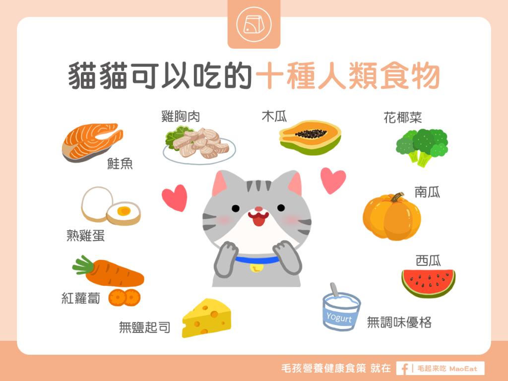【毛孩食材圖鑑】10 種貓貓可以吃的人類食物