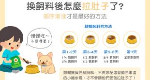 【汪喵餵養知識】狗狗換飼料後怎麼拉肚子了?!循序漸進才健康喔!