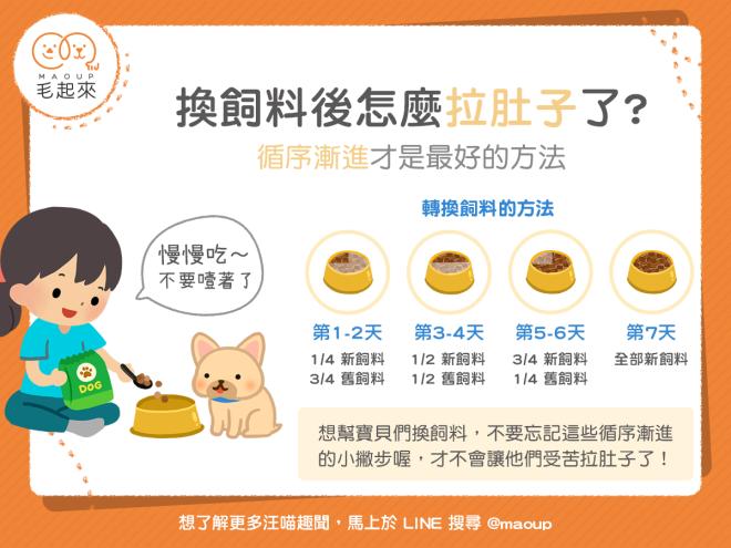 【狗狗健康】狗狗換飼料後怎麼拉肚子了?循序漸進才健康!