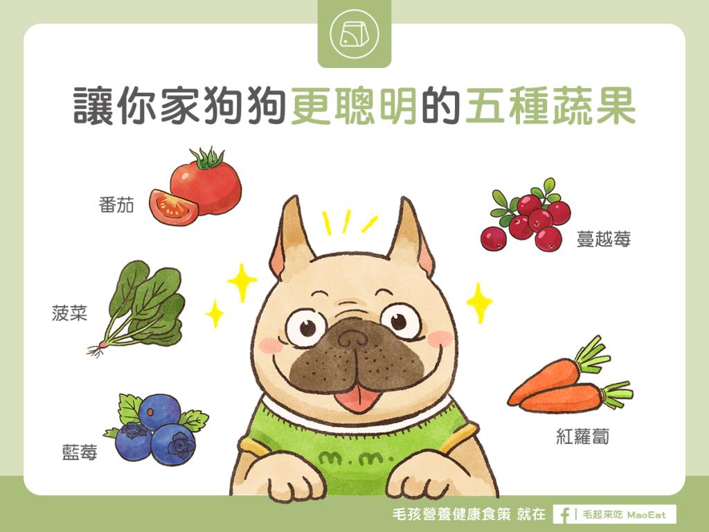 【毛孩食材圖鑑】神奇5蔬果,讓狗狗吃了頭腦「頂呱呱」