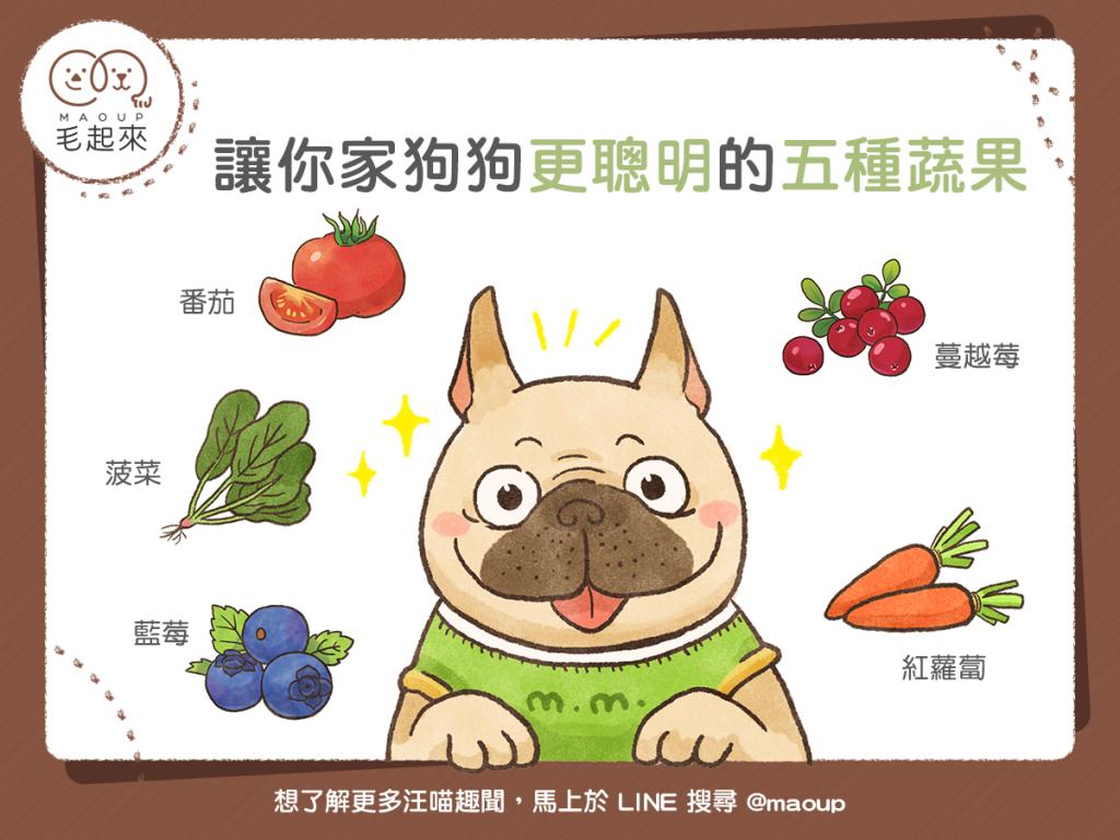 狗可以吃的蔬果