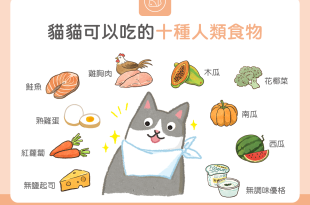 【毛孩食材圖鑑】10種貓貓可以吃的人類食物
