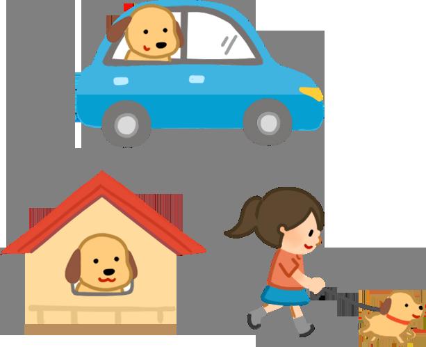習慣坐車 自己看家 外出散步