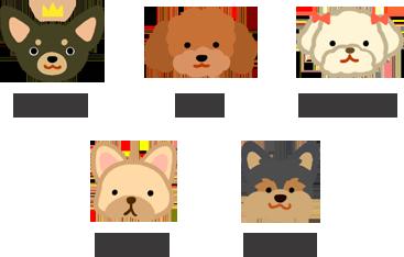 最怕冷的狗狗品種 TOP5