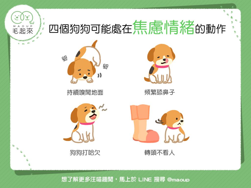【汪汪真心話】狗狗怎麼了?這4種動作說明狗狗可能很焦慮喔……
