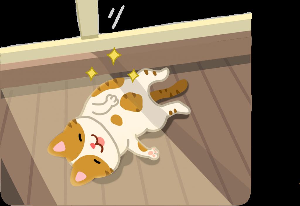 【喵喵真心話】貓咪最愛曬「日光浴」,是為什麼咧?