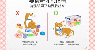 【汪汪的玩具箱】狗狗對玩具不屑一顧?快試試這個小祕訣!