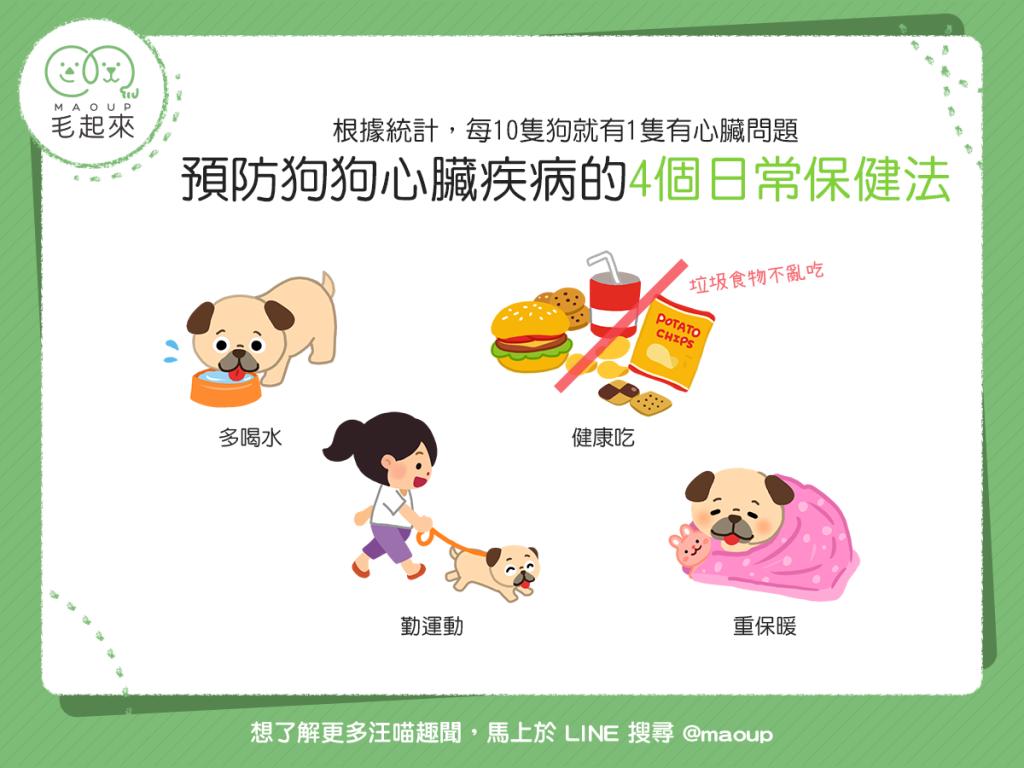 【汪汪康健】4個日常保健法~教你預防狗狗心臟病!
