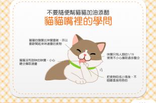 【貓貓嘴裡學問大】還在餵貓吃剩飯?不要隨便幫貓貓加油添醋!