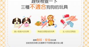 【汪汪的玩具箱】蝦密?!這3種玩具不適合狗狗?!
