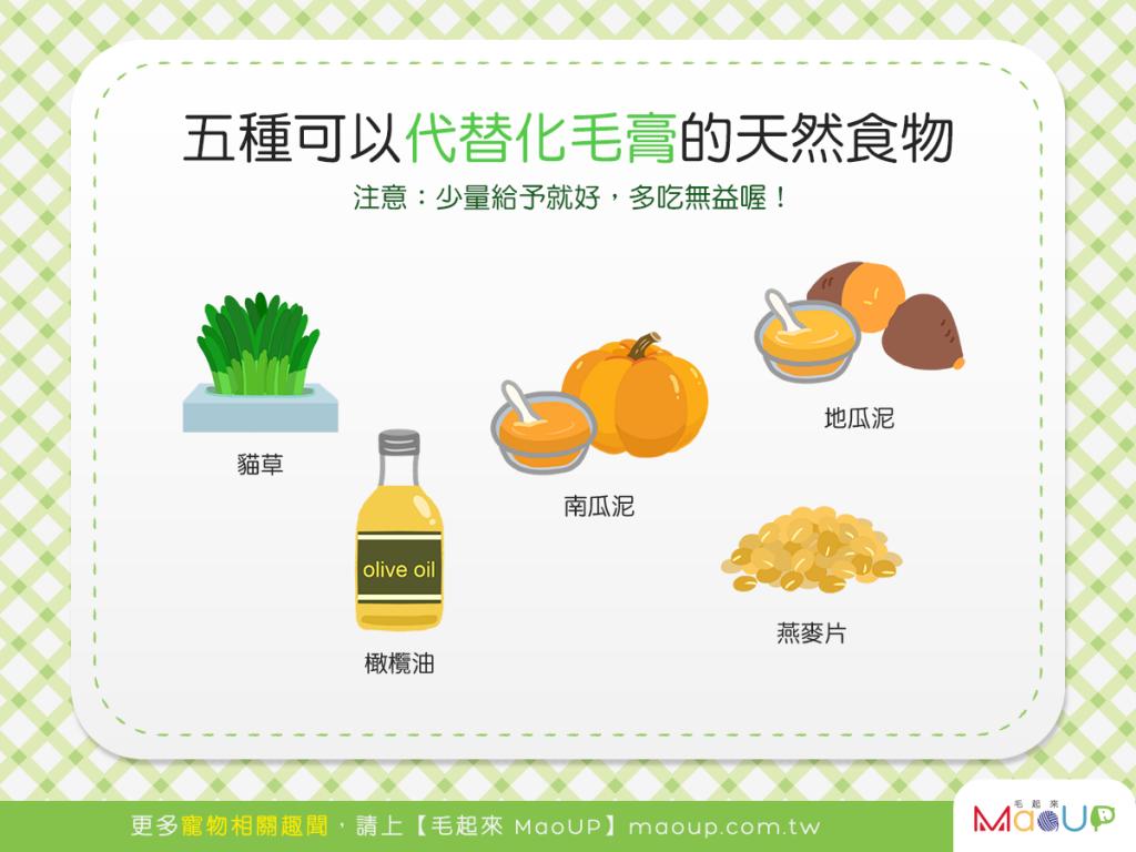 【喵喵呷健康】貓貓愛吃化毛膏?5種可以代替化毛膏的天然食物!