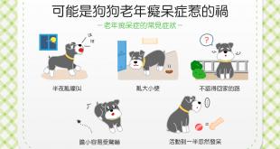 【汪汪康健】狗狗老了性情大變?!可能是老年癡呆症惹的禍!