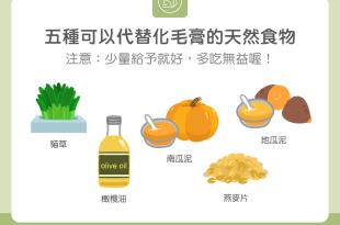【營養食材圖鑑】貓咪福音!5種可以代替化毛膏的天然食物!